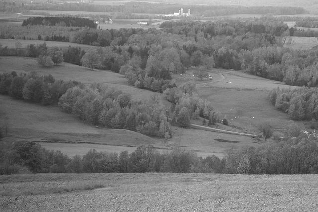 <p>Vers 1870, il acquiert un important troupeau de race en provenance de la Grande-Bretagne. Il r&eacute;alise alors son r&ecirc;ve d&rsquo;&eacute;lever des animaux r&eacute;put&eacute;s et d&rsquo;en faire le commerce. Vers 1880, il fonde la Cochrane Ranche Company Limited. Il dirige d&egrave;s lors la deuxi&egrave;me plus importante entreprise du genre au Canada. Il poss&egrave;de aussi un immense ranch en Alberta.</p>