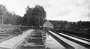 <p>Together with Willis Baldwin, he was very active in the development of the Fish Hatchery at Baldwin&#39;s Mills. He and his wife Bertha Annis dedicated the next 40 years of their lives to this enterprise.</p>