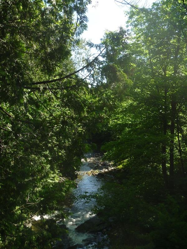 <p>Prenez le temps d&rsquo;&eacute;couter le chant du ruisseau Hillhurst (aujourd&#39;hui ruisseau Veillette).</p>