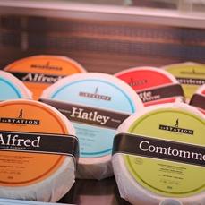 <p>Alfred Bolduc est l&rsquo;anc&ecirc;tre fondateur de cette ferme. Un des fromages, Alfred le fermier, a d&rsquo;ailleurs &eacute;t&eacute; nomm&eacute; en son honneur.</p>