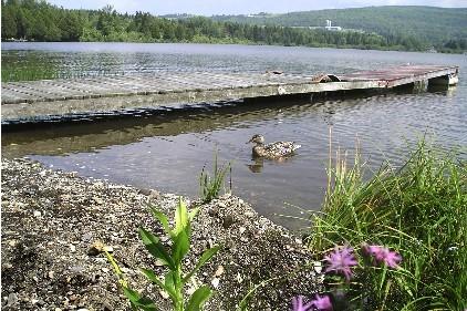 <p>Plusieurs personnes viennent pratiquer la p&ecirc;che dans ce lac.</p>