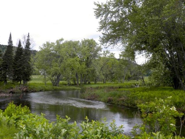 Vue sur la rivière située près du cimetière de l'Indian Stream et duchemin Tabor. Le nom de la rivière, qui témoigne de la présence amérindienne, a été adopté par les pionniers pour désigner leur territoire.