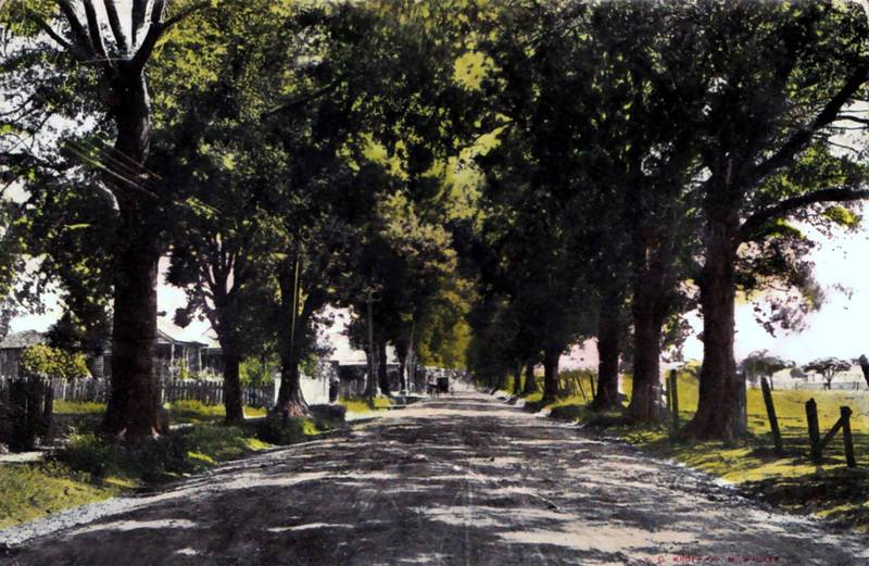 <p>Oak Street now Jefferson in early 1900&#39;s / Oak Street maintenant rue Jefferson vers 1900.</p>