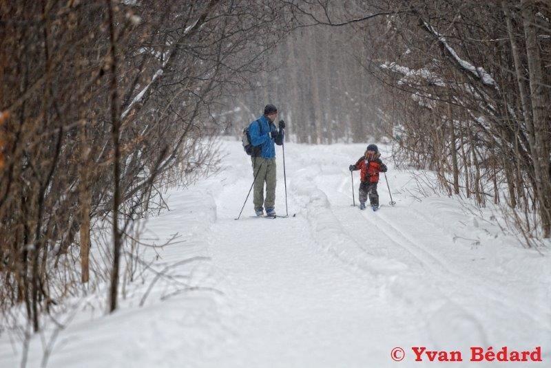 <p>L&rsquo;hiver est une saison active au marais, car plusieurs amateurs de plein-air profitent du territoire. La Soci&eacute;t&eacute; Provancher est heureuse du partenariat qui existe avec la Ville de Neuville depuis 2000, visant l&rsquo;utilisation multifonctionnelle des lieux. C&#39;est ainsi qu&rsquo;est entretenu un r&eacute;seau de pistes de ski de randonn&eacute;e d&#39;environ 5 km. Pour augmenter les possibilit&eacute;s d&#39;utilisation du site, une piste pi&eacute;tonni&egrave;re parall&egrave;le &agrave; celle du ski de randonn&eacute;e a &eacute;t&eacute; ajout&eacute;e.<br /><br />Tout en assurant la qui&eacute;tude des lieux, cette initiative a permis d&#39;&eacute;carter la pr&eacute;sence de motoneiges et du braconnage dans ce milieu naturel prot&eacute;g&eacute;, et en permet une utilisation fort agr&eacute;able.</p>
