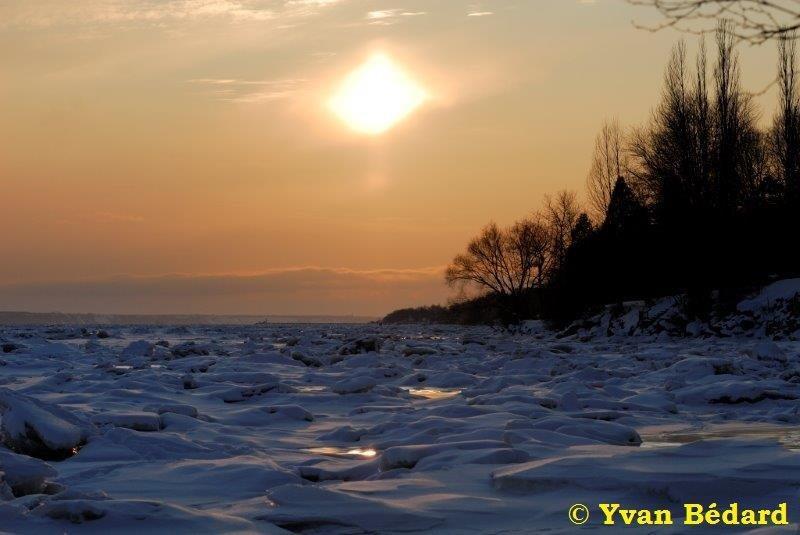 <p>La Soci&eacute;t&eacute; Provancher d&rsquo;histoire naturelle du Canada est heureuse de vous accueillir &agrave; son marais, nomm&eacute; en l&rsquo;honneur du c&eacute;l&egrave;bre entomologiste, l&rsquo;abb&eacute;&nbsp; L&eacute;on Provancher. Le territoire du marais, vou&eacute; &agrave; la protection de la faune et de la flore, couvre une superficie de 125 hectares au nord du fleuve Saint -Laurent. A titre comparatif, cette superficie est plus grande que celle du c&eacute;l&egrave;bre parc des Champs-de-Bataille &agrave; Qu&eacute;bec!</p>
