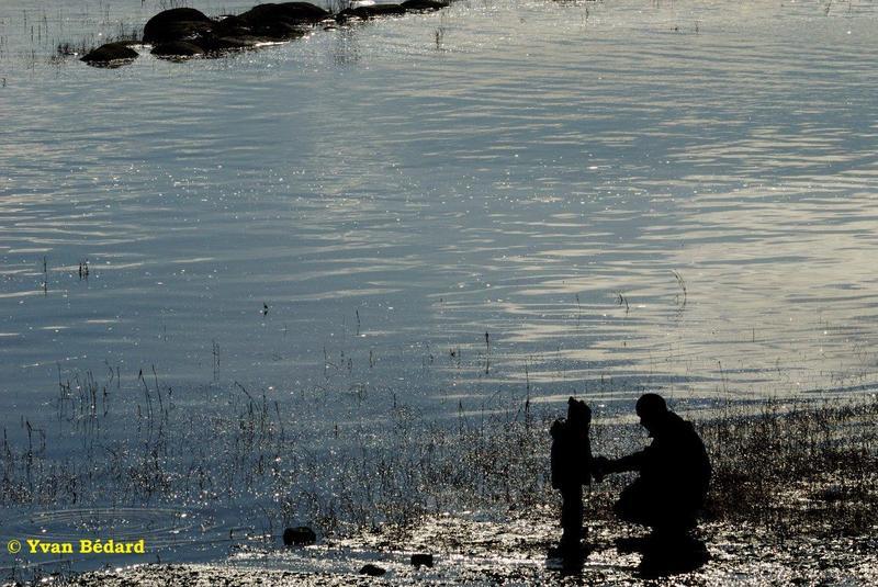 <p>Le marais L&eacute;on-Provancher est beaucoup plus qu&rsquo;un marais. En effet, le territoire rec&egrave;le plusieurs types d&rsquo;habitats. Le circuit printanier vous conduira&nbsp; dans la for&ecirc;t, pr&egrave;s du ruisseau puis sur la digue.<br /><br />(Photo: Rive du Fleuve St-Laurent au marais L&eacute;on-Provancher)</p>