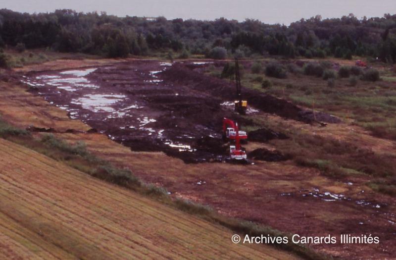 <p>C&rsquo;est en 1994 que Canards Illimit&eacute;s a construit la digue qui mesure un peu plus de 1 km de long afin de cr&eacute;er le marais L&eacute;on-Provancher. L&#39;objectif de ce projet &eacute;tait d&#39;offrir un habitat de qualit&eacute; &agrave; la sauvagine. Depuis sa mise en op&eacute;ration, en 1996, le marais attire plus de 120 esp&egrave;ces d&#39;oiseaux aquatiques, &agrave; la grande satisfaction des ornithologues et des autres amants de la nature.<br /><br />Photo: Construction de la digue, &copy; Archives Canards Illimit&eacute;s</p>