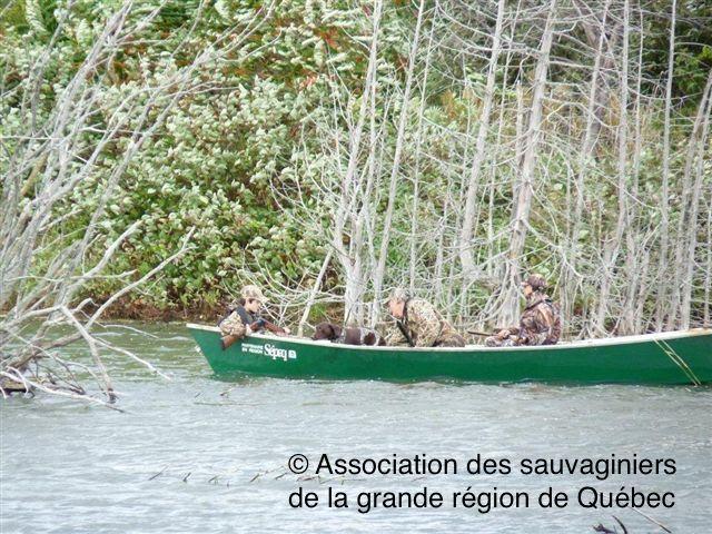 <p>Depuis 1996, chaque automne, le marais L&eacute;on-Provancher accueille l&rsquo;Association des sauvaginiers de la grande r&eacute;gion de Qu&eacute;bec pour une activit&eacute; d&rsquo;initiation &agrave; la chasse &agrave; la sauvagine. Apr&egrave;s avoir suivi une formation structur&eacute;e, des chasseurs de 12 &agrave; 17 ans ont la chance d&rsquo;&ecirc;tre initi&eacute;s sous la supervision d&rsquo;un moniteur exp&eacute;riment&eacute;. Pendant 2 jours, l&rsquo;acc&egrave;s au territoire est restreint. Le marais convient bien &agrave; pareil exercice, et la Soci&eacute;t&eacute; Provancher d&rsquo;histoire naturelle du Canada consid&egrave;re important d&rsquo;&ecirc;tre associ&eacute;e &agrave; ce programme consacr&eacute; &agrave; la rel&egrave;ve. En connaissant les habitats fauniques et en sachant bien tirer, les initi&eacute;s risqueront moins de blesser la sauvagine. Moins d&rsquo;une dizaine d&rsquo;oiseaux sont pr&eacute;lev&eacute;s lors de ces deux journ&eacute;es.<br /><br />Photo : &copy; Association des sauvaginiers de la grande r&eacute;gion de Qu&eacute;bec</p>