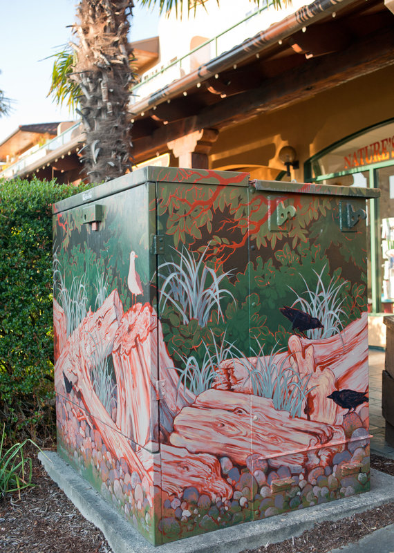 <p>LOCATION: near 5514 Wharf Ave.<br />MURAL: <em>Stoneshores</em>, 2008<br />ARTIST: Jan Poynter<br />MEDIUM: Acrylic paint<br /><br />As part of a Sechelt Downtown Revitalization Plan, the District of Sechelt and BC Hydro put out a call for artists to decorate various utility boxes. Local artist Jan Poynter was awarded the project, and &lsquo;Driftwood&rsquo; was the theme selected. Each of the boxes depicts different &lsquo;phases&rsquo; of driftwood - from log boom, to stranded high tide logs, to small bits of driftwood among the stones.<br />Stoneshores is painted directly onto a large BC Hydro utility box on Wharf Ave. It features the local seastone shoreline along with large stumps and driftwood jumbled in front of the dark forest. Pale grey beach grass and evergreen salal peek through the bits of wood. Perched atop stumps and rocks are seagulls and crows. Look closely and you may find a black bear peering from the darkness.<br />Jan Poynter studied Painting and Printmaking at the Vancouver School of Art (now Emily Carr University of Art Design) and continued in Art Education at UBC. Poynter now works as a professional artist, illustrator, and art instructor in Gibsons.</p>