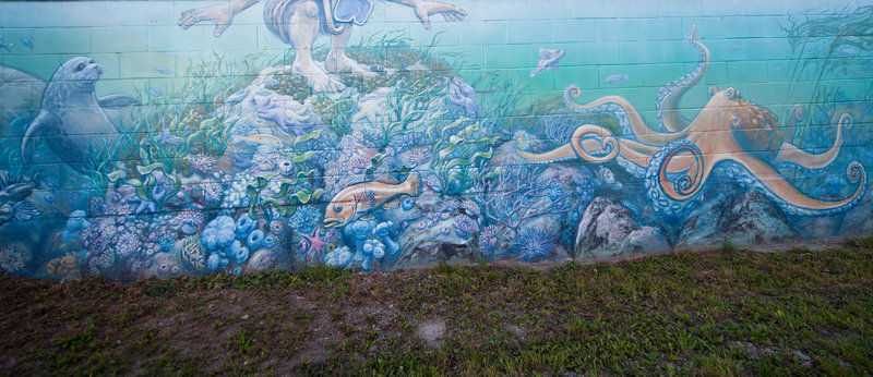 <p>LOCATION: near 5670 Teredo St.<br />MURAL: <em>Sea Wall</em>, 2004-05<br />ARTIST: Dean Schutz<br />MEDIUM: Acrylic and latex paint<br /><br />This vibrant mural depicts many of the underwater plants, mammals and fish that are native to the ocean nearby. At one end of the mural you can see a Harbour Seal and a Quillback Rockfish. A snorkeler perched atop sea star-covered rocks spots a Giant Pacific Octopus. Near the far you&rsquo;ll see Pacific white-sided dolphins that have in recent years been spotted in large pods locally, often performing quite a show.&nbsp; It is this diverse and colourful variety of sea life that makes our local waters so popular to snorkelers and scuba divers.</p>