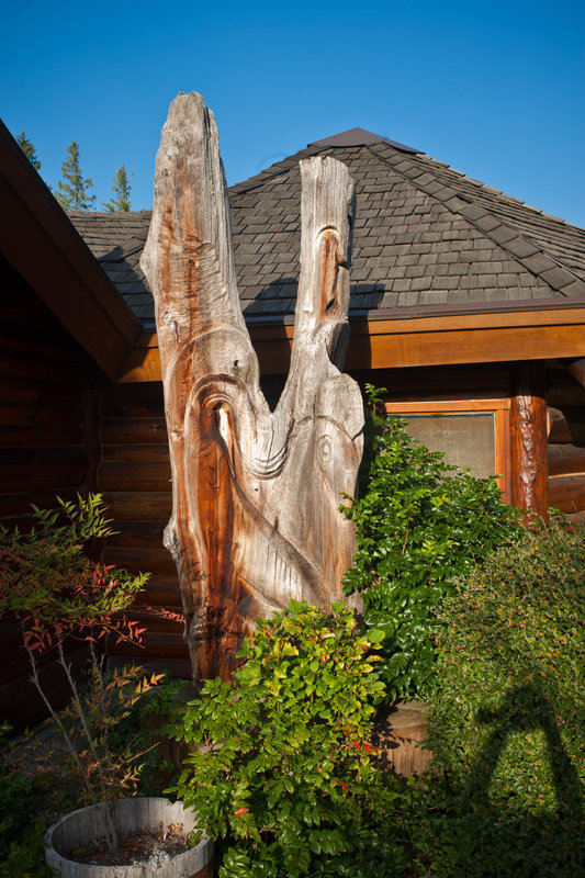 <p>LOCATION: 5714 Medusa St. (Sunshine Coast Arts Centre)<br />SCULPTURE: <em>Sealion &amp; Seahorse</em>, 1981<br />ARTIST: Dudley Carter<br />MEDIUM: Red cedar<br />This red cedar sculpture has welcomed visitors to the Sunshine Coast Arts Centre for over 30 years. The Sunshine Coast Arts Council officially acquired the work in 1984 thanks to the fundraising efforts of local volunteers.</p>