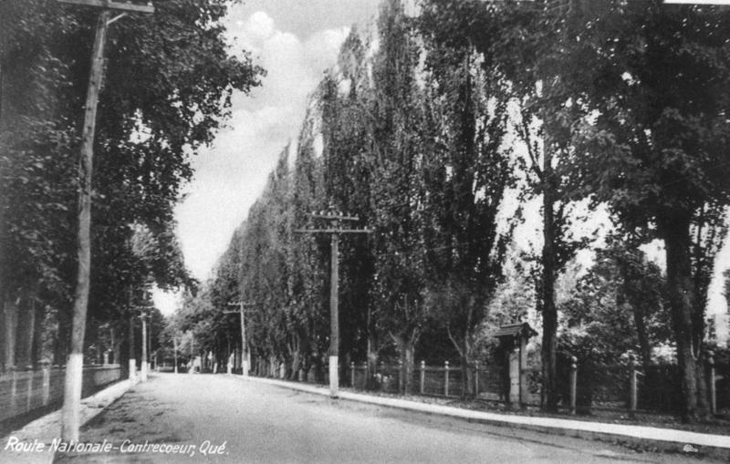 <p>Sur la route 3 (aujourd&#39;hui la 132), entre les rues Charron et Chabot,&nbsp;s&#39;&eacute;levait autrefois, en bordure du parc priv&eacute; de la famille McNichols (&agrave; droite&nbsp;sur la photo), ce bel alignement de peupliers de Lombardie.</p>