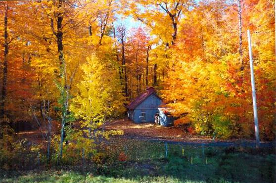 <p>La cabane &agrave; sucre du cur&eacute;, vue de la rue St-Antoine. Photo prise &agrave; l&rsquo;automne 1999.</p>